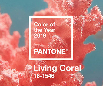Pantone colour of the year is …